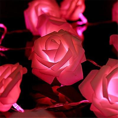 KINGSO 20 LED Battery Operated Rose Flower String Lights Wedding Garden Christmas Decor (Warm White)