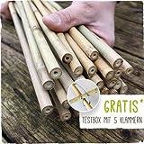 Bambusstäbe - Bambusstangen 152 cm lang/ 10-12 mm dick