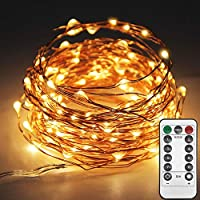 Twinkle Star 33ft 100LED Copper Wire String Lights Fairy...
