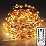 Twinkle Star 33ft 100LED Copper Wire String Lights Fairy String Lights 8 Modes LED String Lights USB Powered with Remote Control for Wedding Party Home Decoration, Warm White