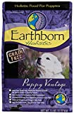 Earthborn Holistic Puppy Vantage Grain Free Dry Dog Food, 5 Lb. Review