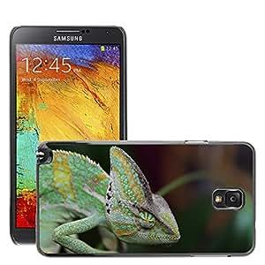 Super Stella Slim PC Hard Case Cover Skin Armor Shell Protection // M00145138 Sleeping Chameleon Yemen Chameleon // Samsung Galaxy Note 3 III N9000 N9002 N9005