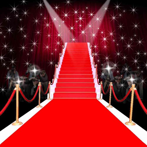 GladsBuy Glorious Red Carpet 10' x 10' Computer Printed Photography Backdrop Stage Carpet Theme Background ZJZ-020 (Carpet Printed)