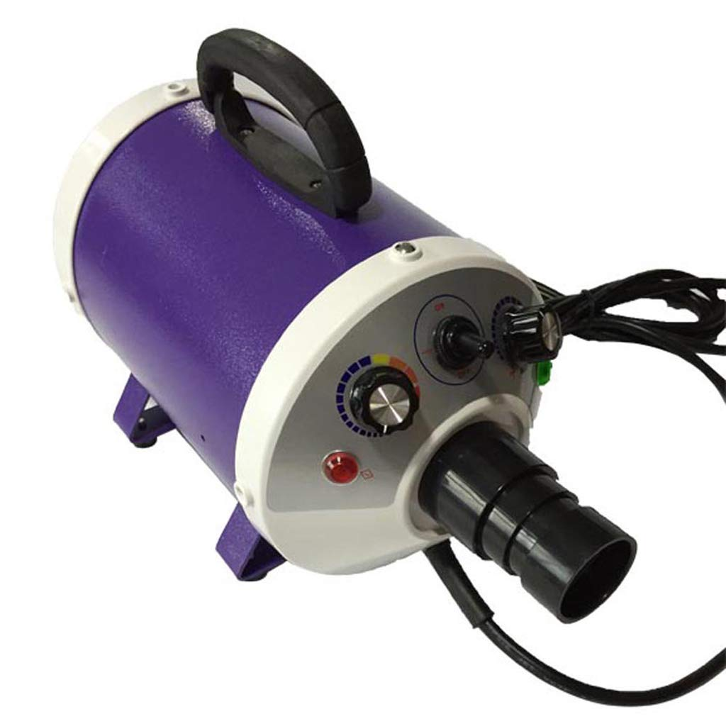 PURPLE Pet Dryer 2000W Blow Mute Negative Ion for Hair High Power Water Blower (color   Purple)