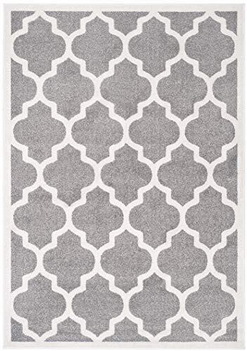 Safavieh Amherst Collection AMT420R Dark Grey and Beige Indoor/Outdoor Area Rug (5' x (Look Indoor Outdoor Area Rug)