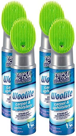 Woolite Carpet and Upholstery Cleaner Stain Remover, 4 pack - 83524 , 12 Oz each and every