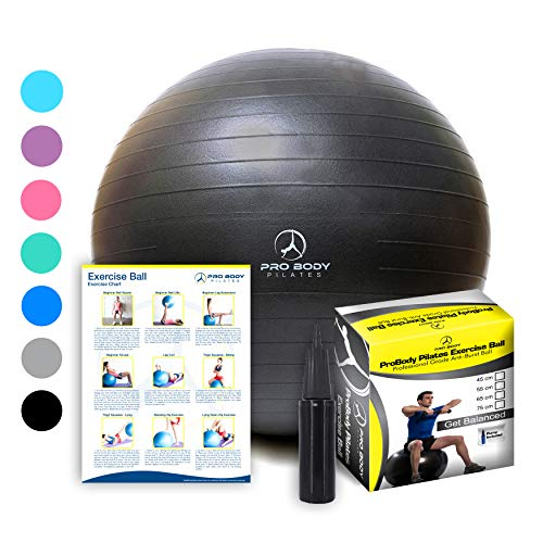 Exercise Ball - Professional Grade Anti-Burst Fitness, Balance Ball for Pilates, Yoga, Birthing, Stability Gym Workout Training and Physical Therapy (Black, 65 cm) (Best Ab Workouts With Medicine Ball)