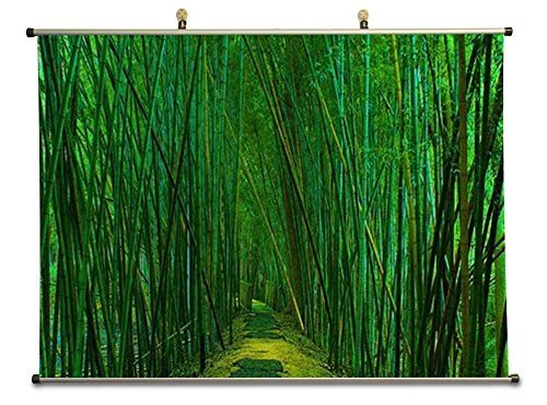 Green Bambo Forest Trail - Canvas Wall Scroll Poster (24x16 - Bambo Forest