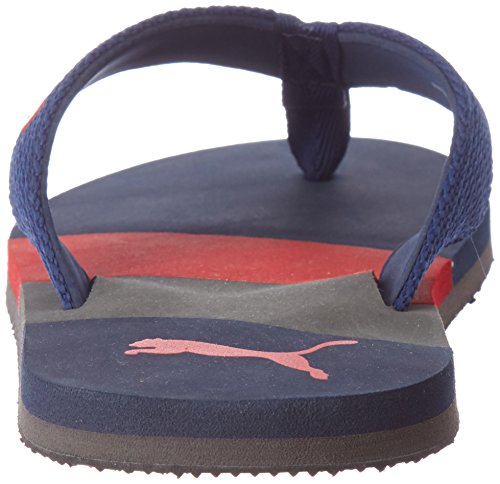 9b1bbf4caca7d Puma Men s Robby Dp Limoges and High Risk Red Flip Flops Thong Sandals - 6  UK India (39 EU)  Buy Online at Low Prices in India - Amazon.in