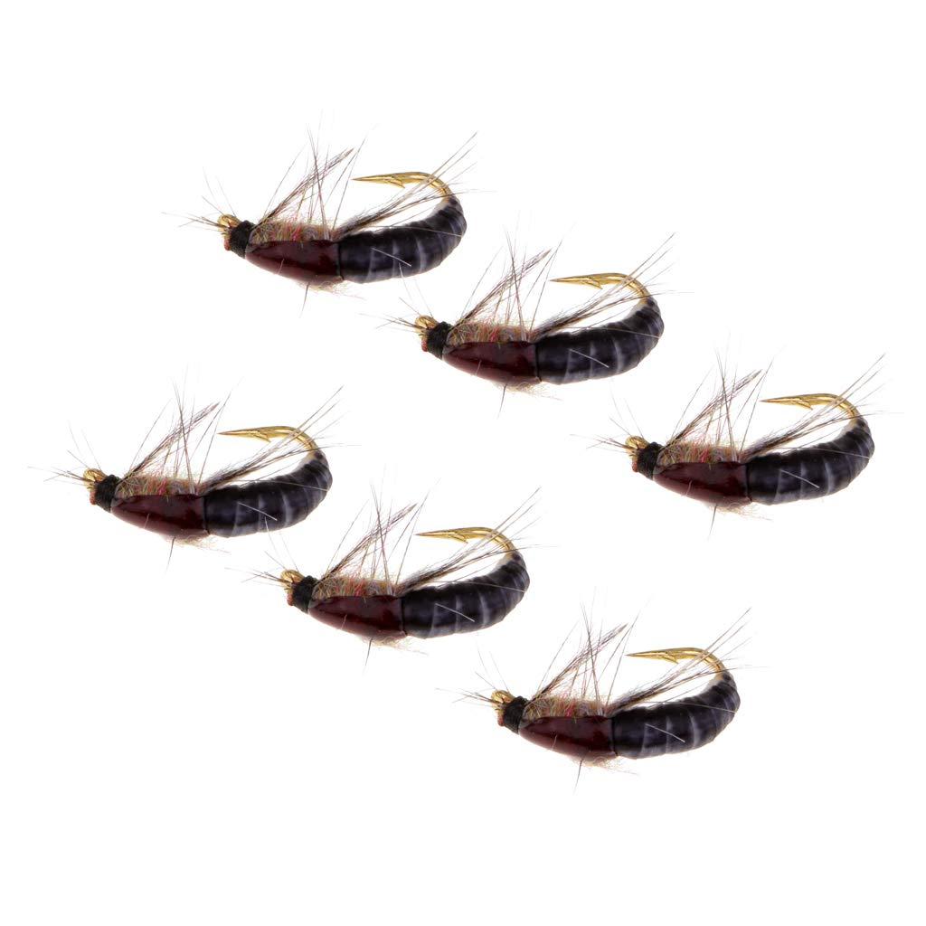B Blesiya 6pcs Ninfas Insectos Pesca Trucha Moscas Scud Cebos Artificiales Se/ñuelos con Cebo Trampa Carnada