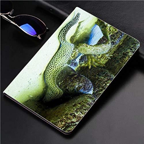 - iPad 9.7