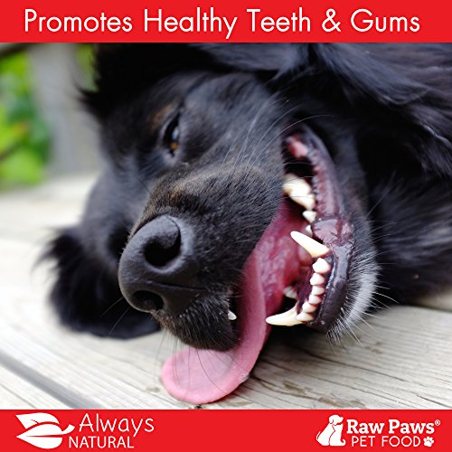 5937a606e6583 free shipping Raw Paws Pet All-Natural 6-inch Bully Sticks - Grass ...