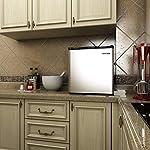 LEONARD USA 60 L Inverter Stainless Steel Door Mini Fridge for Room, Home, Office or Bar (Based on American Technology…