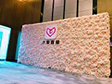 """48"""" X 96"""" Artificial Silk Rose Flower Background Backdrop Wall Wedding Party Decor ( Champagne Color)"""