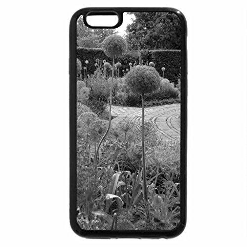 iPhone 6S Plus Case, iPhone 6 Plus Case (Black & White) - Allium onion family