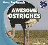 Awesome Ostriches, Ryan Nagelhout, 1433994178