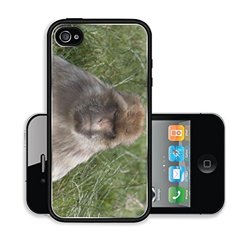 iPhone 4 4S Case 007Monkey Forest Image 20651939076
