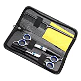 Queentools Professional Hair Cutting Scissors Shears Barber Thinning Set Kit with a Black Case