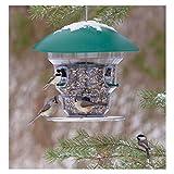 electronic bird feeder - Wild Bill's Non-Electric Feeding Frenzy Bird Feeder