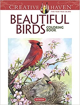 Amazon Creative Haven Beautiful Birds Coloring Book Adult 9780486804019 Dot Barlowe Books