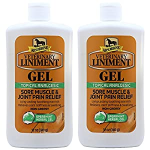 Absorbine Veterinary Liniment Gel, 12-Ounce 2 Pack 1