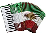 D'Luca D3048-MX Grand Piano Accordion 3 Switches 30 Keys 48 Bass with Case and Straps, Red/White/Green