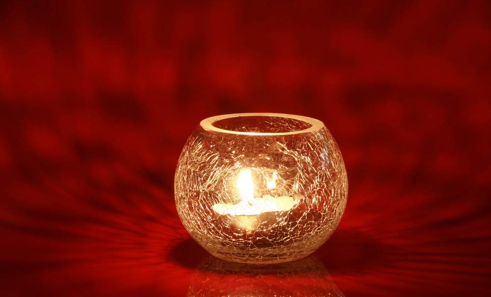 CandleNScent 200 Tea Lights | 5 Hr | Paraffin-Free Natural Tealight Candles