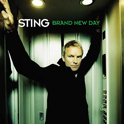 Brand New Day [2 LP] (Vinyl Record Brand New)