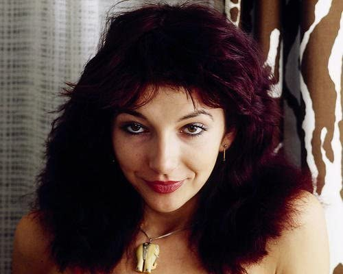 Kate Bush Framed Canvas Art Picture Print Ready To Hang
