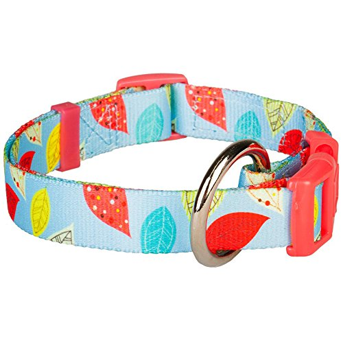 Blueberry Pet 3/4-Inch Baby Blue Leaves Print Dog Collar, Medium