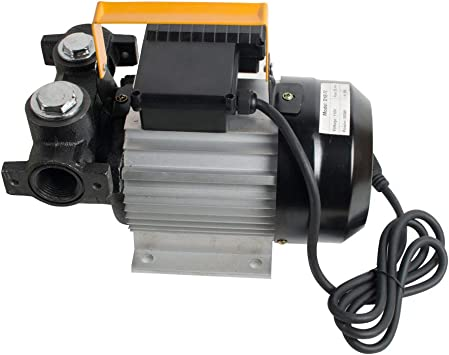 Cast Iron Electric Oil Pump Transfer Fuel Diesel Self Priming Transferpump 550W! 10V Oil Pump American Standard Us Plug