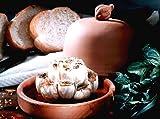 Romertopf by Reston Lloyd Natural Clay Garlic Roaster with Glazed Bottom