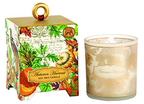 - Michel Design Works Gift Boxed Soy Wax Candle, 6.5-Ounce, Autumn Harvest