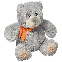 DaySpring Joy For Your Heart Plush Bear (36994)