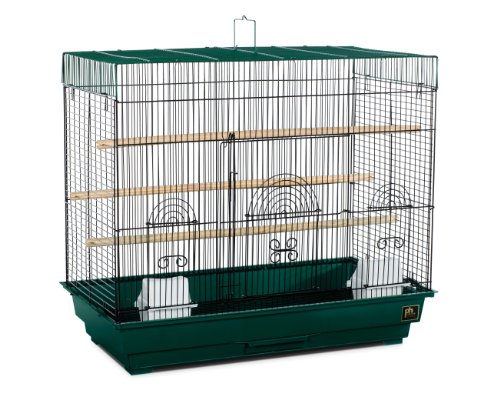 Prevue Hendryx Flight Cage, Green and Black, My Pet Supplies