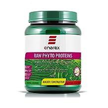 Enerex Raw Vegan Superfoods Protein Vanilla 588gm