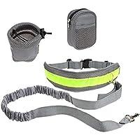 Correa de entrenamiento manos libres con cinturón ajustable, cuerda elástica y bolsa de almacenamiento, apto para caminar, correr con tu perro