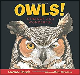Image result for OWLS! STRANGE AND WONDERFUL