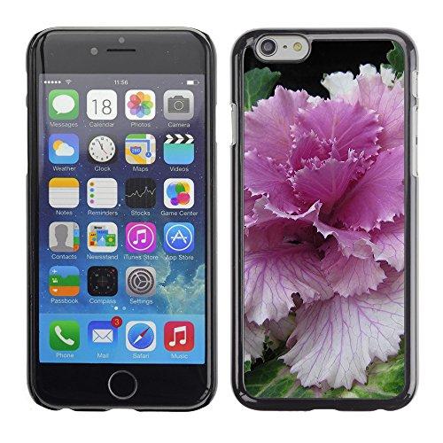 """Premio Sottile Slim Cassa Custodia Case Cover Shell // F00004446 une fleur // Apple iPhone 6 6S 6G 4.7"""""""