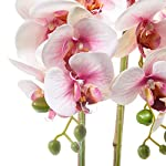 ENCOFT-Alicemall-Butterfly-Orchid-Artificial-Flower-12-Heads-Pink-in-White-Simulation-Phalaenopsis-Bonsai-with-Ceramic-Vase-Wedding-Party-Home-Centerpiece-Decor-Pink-White