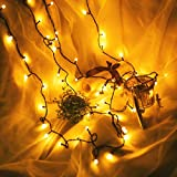 Vovomay Window Curtain Copper Bulb Lights String, LED Light Party Decor Striking with 100 LED Beads (Yellow)