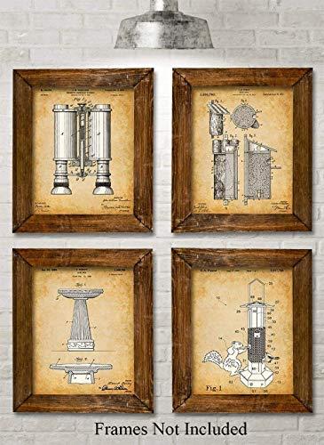 Original Bird Watching Patent Prints - Set of Four Photos (8x10) Unframed - Makes a Great Gift Under $20 for Bird Lovers