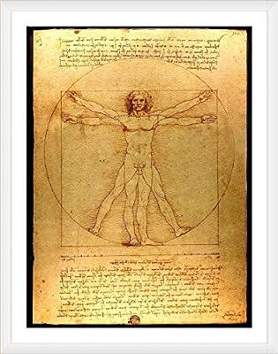 Alonline Art - The Vitruvian Man Leonardo Da Vinci Framed Cotton Canvas for Home Decor Ready to Hang Wall Art Museum Quality Frame Frames