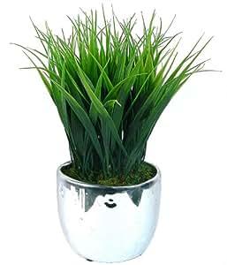 "Laura Ashley VHA100043.2PACK 11"" Tall 2 Pack Grass in Designer Silver Ceramic (9x9x11) Tree"