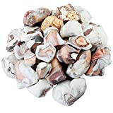 SUNYIK Natural Raw Stones Rough Rock Crystals for Tumbling,Cabbing,Pink Striped Agate,1pound(about 460 gram)