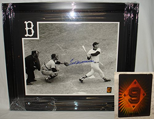 Ted Williams Hand Signed / Autographed Boston Red Sox Home Run 16 x 20 Photo -