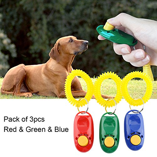 B Seen Training Clicker Wrist Accessories