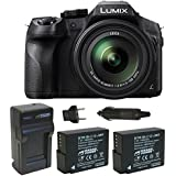 Panasonic LUMIX DMC-FZ300K, 4K Video, Splash & Dustproof Body, Leica DC Lens 24X F2.8 Zoom (Black) Bundle