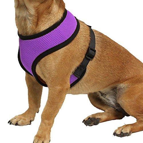 iEFiEL Soft Mesh Geschirr XS - XL für Hunde Harness Geschirr Hundegeschirr Weich Brustgeschirr Welpengeschirr (S, Lila)
