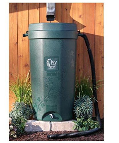- Rain Water Solutions 50 Gallon Rain Barrel